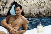 Fragrance Campaigns / by Fashionisto