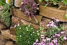 Garden Style / by Lynne Nero