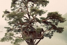 Tree Houses / by Christina Marie