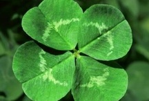 St. Patrick's Day / For a bit of luck!!!