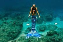Mermaid - my lovelies