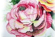 Watercolor:  Flowers 12 / Watercolor Flowers / by Junell Toney