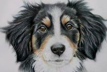 Colored Pencil:  Animals / Artwork using colored pencils as the medium. / by Junell Toney