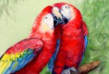 Watercolor:  Animals 8 / Watercolor Animals / by Junell Toney