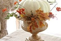 FALL & HALLOWEEN PUMPKINS / by Angie Crabtree