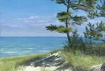 Beaches / by Sheila Lolmaugh