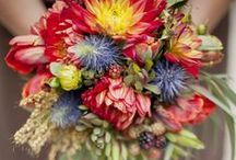 Pretty Flowers & Bouquets / Beautiful flowers and bouquets