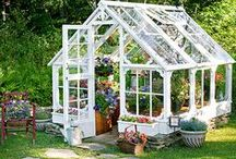 Greenhouses / Greenhouses are a great way to enhance or extend your growing season.