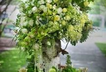 Wedding ideas / by Vanessa Lise McConnell
