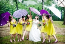 Chartreuse, Purple, & Orange Wedding