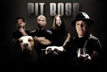 Pit Boss / Shorty Rossi & Friends / by Bobbie Ray