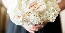 Blush & Ivory Wedding / http://significanteventsoftexas.com/