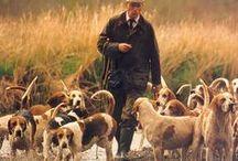Hunters & Dogs