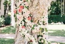 Weddings | Ceremony Decor