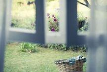 wide windows, like open arms / by Destiney Lee