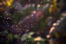 iridescent ☯ / by Destiney Lee