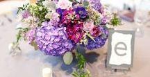 Purple & Gray Wedding