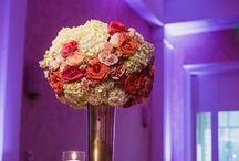 Fuchsia & Coral Wedding