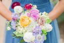 Blue, Lavender, Pink, & Burgundy Wedding / Blue, Lavender, Pink, & Burgundy Wedding