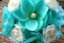 It's Turquoise or Teal / by Cheryl Nelson