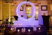 Olivia's Launch / Olivia Buckley Events' launch party