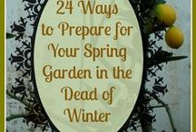 Spring Gardening Tips & Ideas / Early Spring Garden. Find smart tips for early spring planting, indoor seed starting tips, soil and garden prep, forcing spring bulbs and when to do what.  / by Aspen Country