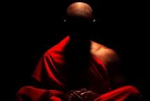 1001 Budas / by Cris Mena