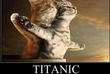 Titanic Stuff / by Donna Puckett