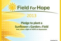 "iFred | Field for Hope / ""Pinspiration"" for our #FieldforHope campaign. / by IFred"