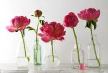 P is for peonies!