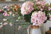 Bloomin Love / Flowers!!!