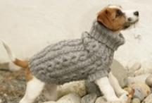 Knitting Knut