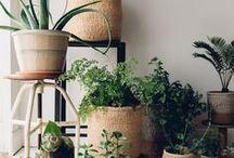 Ethical Home Decor / Home decor, fair trade style.