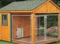 Dog Hause