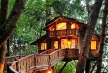Treehouse! / by Melissa A