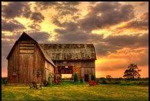 barns / by Amy Hirsch