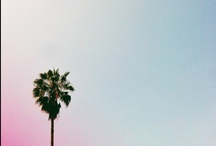 Los Angeles / So many reasons to love Los Angeles.  Check out the full Fathom guide:  http://shar.es/VAS1u