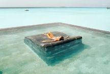 If we had an island... //