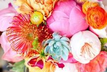 PALETTE | Sunshine Brights / Gorgeous wedding planning ideas in sunshine colours!   Think bright yellows, oranges and pinks