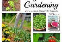 Garden Goals / Garden Goals and Inspiration