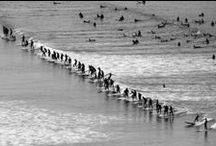 B&W Surf