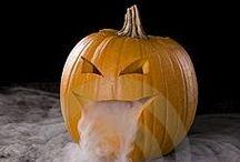 Halloween / by Koury Jo