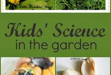 Garden Education / Lessons and activities that use the garden to teach interdisciplinary concepts: math, science, language arts