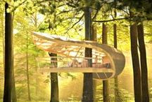 Built by Man / by Stevi Mahaffey
