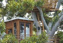Casa na Árvore