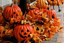 Halloween / by Kay Reagan