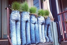 Blue Jean  / I LOVE Denim and I am the most myself in my jeans. / by Denise Pilat-Curatolo