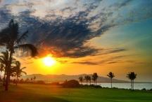 Punta Mita Amazing Views Collection