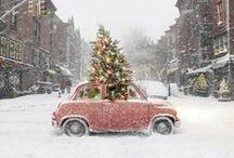 holiday joy / by Rachel Riley