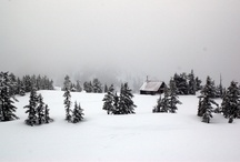+ Home Alpine Home / Barns & Moutain Cabins | Houses where we appreciate the harmony and beauty of Nature, without taming it. Wood + stone + room with a view